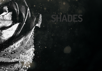 "Stephanie Esther Fam || Poetry Book ""Shades"""
