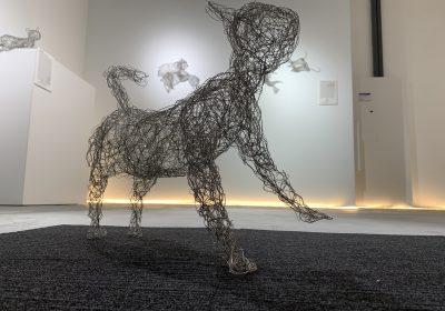 Victor Tan || Cat Sculptures to NFTs